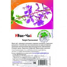 Иван-чай (кипрей узколистный)